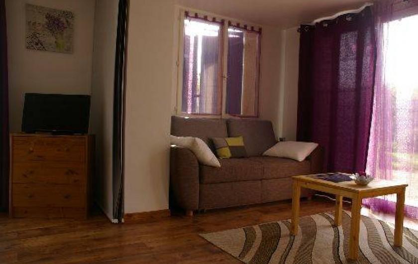 Location de vacances - Gîte à Gargas - salon avec canapé convertible