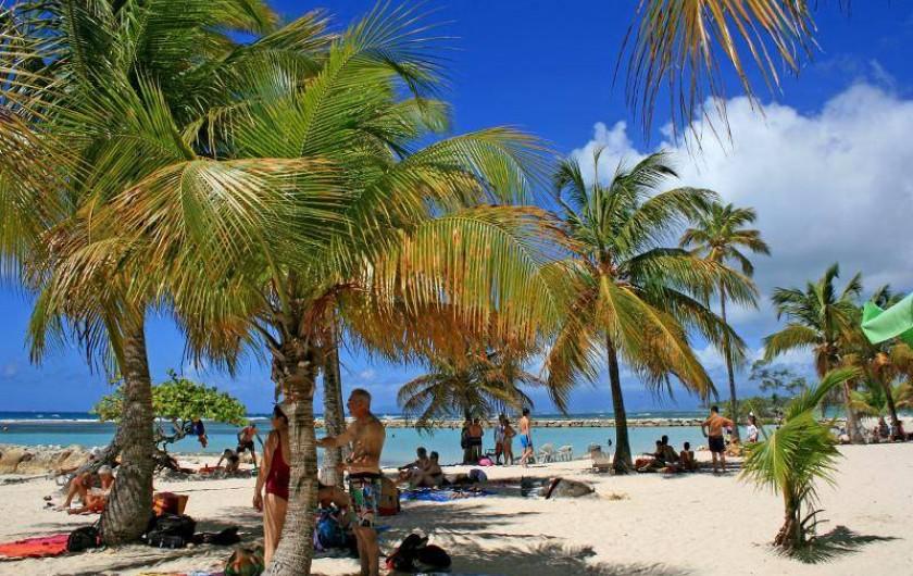 Location de vacances - Maison - Villa à Sainte-Anne - La belle plage de Ste Anne