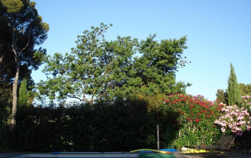 Location de vacances - Mas à Agay