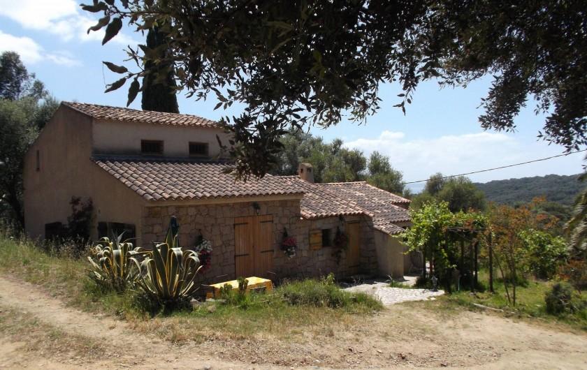 Location de vacances - Chalet à Olmeto - L'ensemble