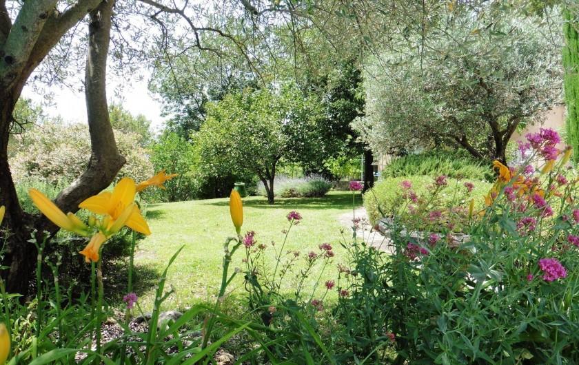 Location de vacances - Chambre d'hôtes à Entrechaux - Les jardins de l'Esclériade : des fleurs en toutes saisons.