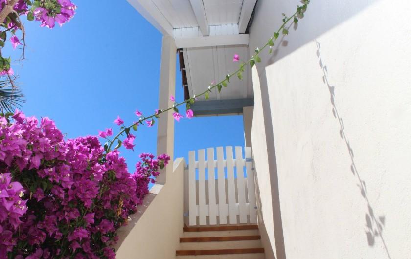 Location de vacances - Chambre d'hôtes à Porticcio - Montée fleurie à l'étage