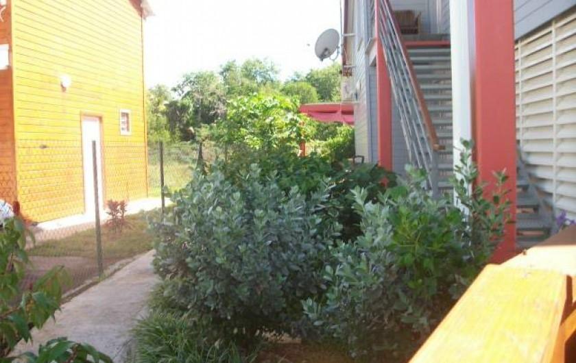 Location de vacances - Appartement à Sainte-Anne - Jardin vue de coté