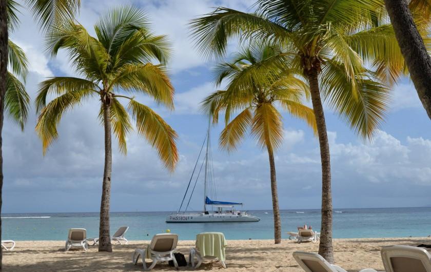 Location de vacances - Appartement à Sainte-Anne - Plage de la Caravelle vue du Cub Med a 200m de la residence