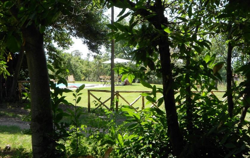Location de vacances - Gîte à Viterbo - Le jardin