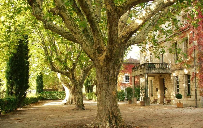 Location de vacances - Appartement à Bollène - Devant de château , le gîte est à côté