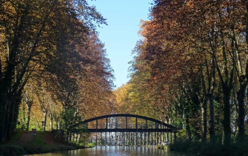 Location de vacances - Gîte à Meilhan-sur-Garonne - Canal à l'automne