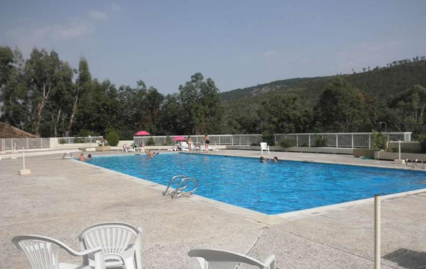 Location de vacances - Studio à Mandelieu-la-Napoule - piscine 25x10 m