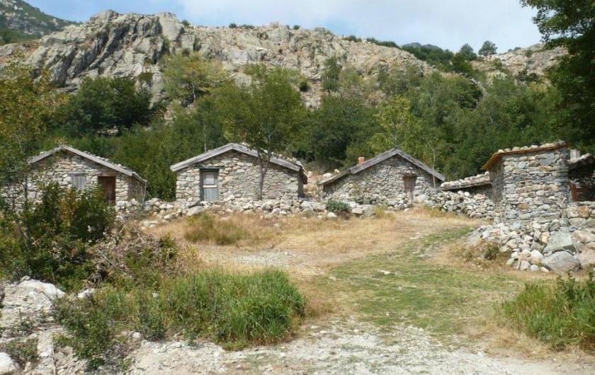 Location de vacances - Gîte à Ghisoni