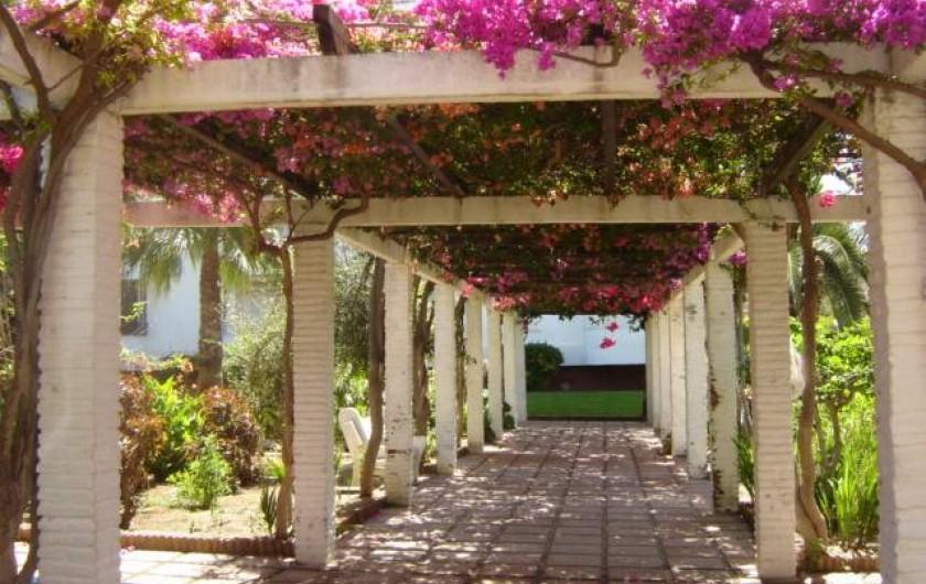 Location de vacances - Appartement à Torrox Costa - URBANIZACION
