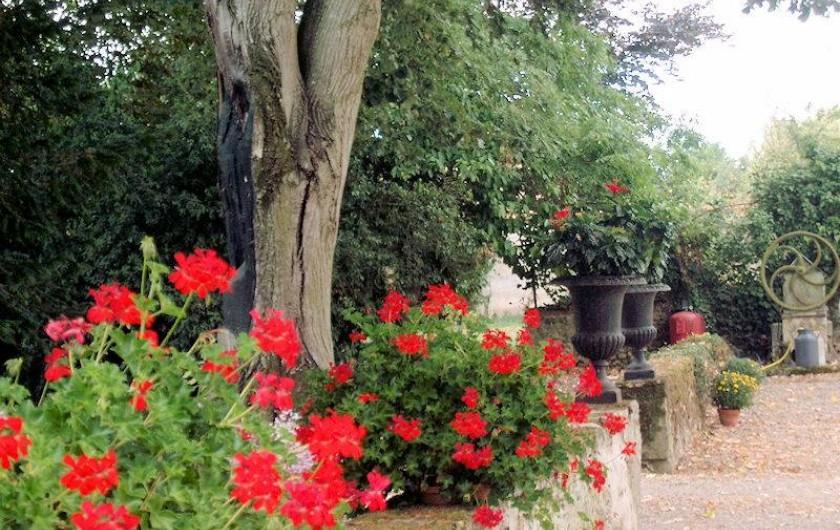 Location de vacances - Chambre d'hôtes à Juillé - jardin