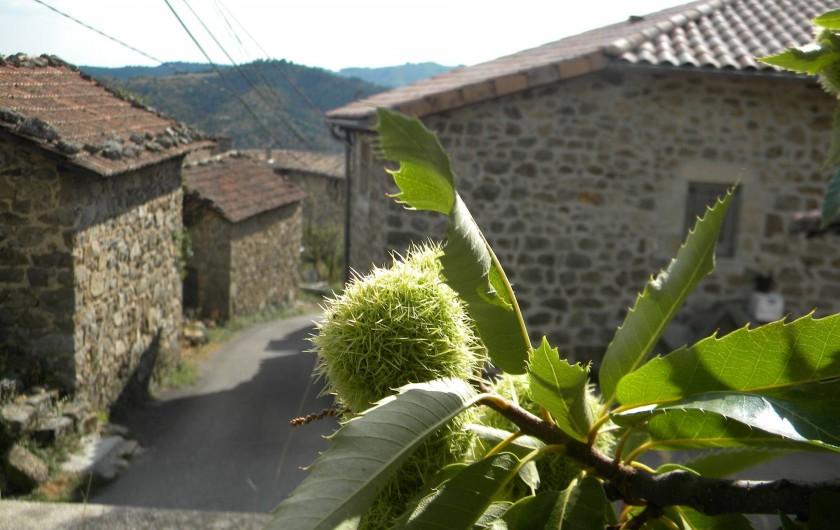 Location de vacances - Gîte à Vals-les-Bains - gite Alice et Clément / chemin de randonnée/