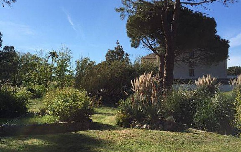 Location de vacances - Villa à Calvi - Environnement  vue cour