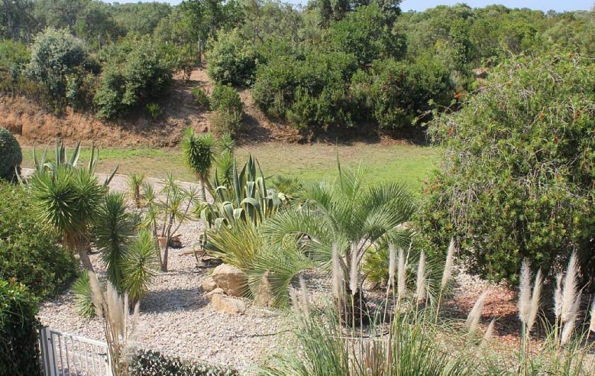 Location de vacances - Appartement à Porticcio - petit jardin vue de la terrasse