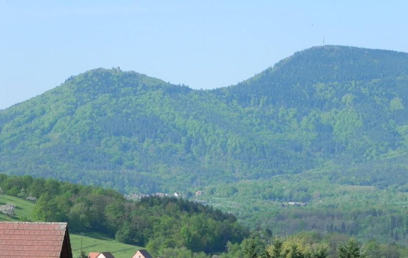 Location de vacances - Chambre d'hôtes à Saint-Pierre-Bois - Vue de la chambre magnolia