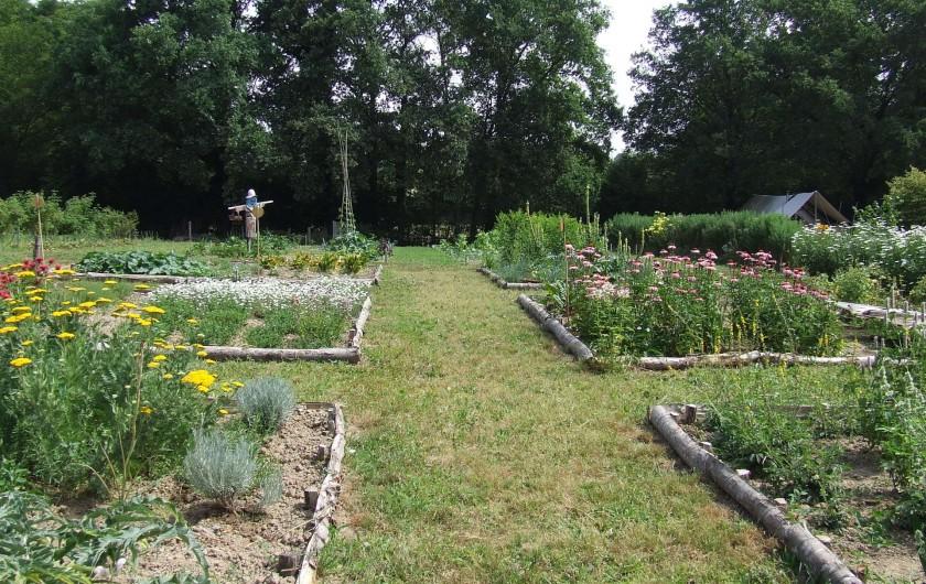 Location de vacances - Tipi à Saint-Vincent-en-Bresse - Nous cultivons nos légumes, fleurs et plantes médicinales !