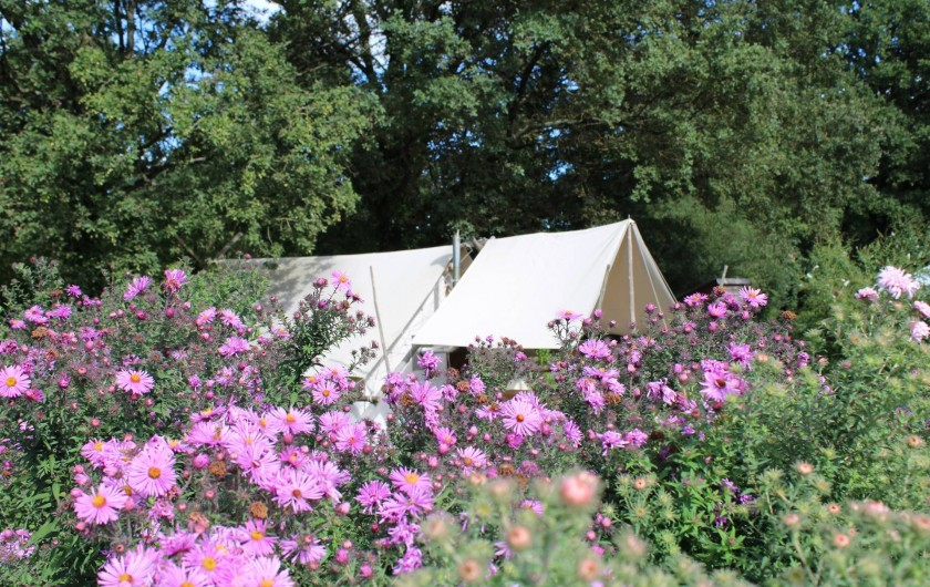 Location de vacances - Tipi à Saint-Vincent-en-Bresse - elle sera cachée dans le jardin, ou dans un site encore plus sauvage !