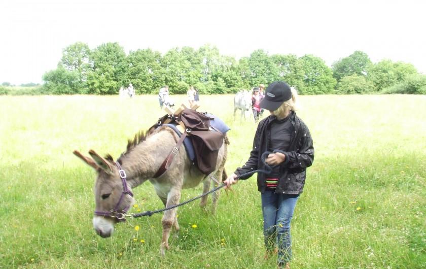 Location de vacances - Tipi à Saint-Vincent-en-Bresse - Tulipe et Yuna, aimeront qu'ils les caressent, ou les emmènent brouter !