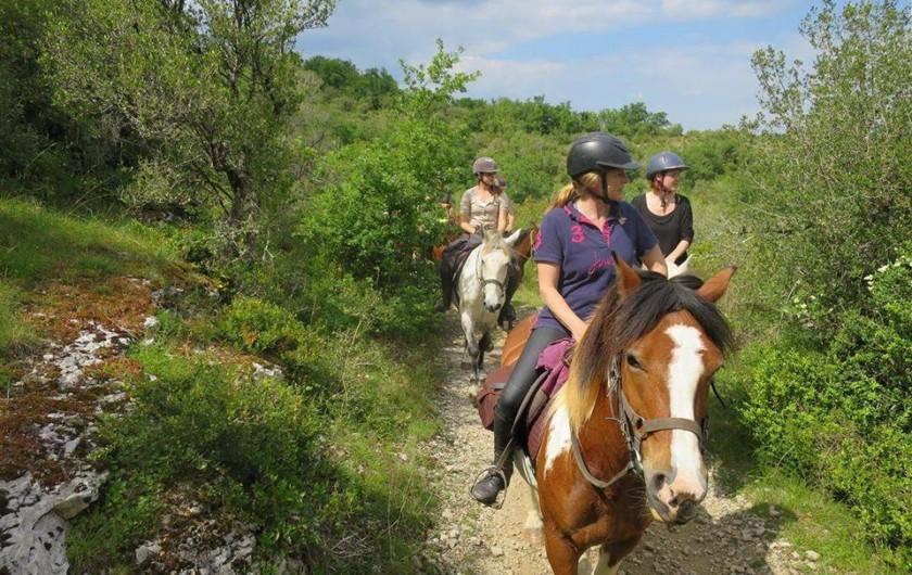 Location de vacances - Chalet à Montricoux - De belles randonnées à pied, à cheval ou à VTT