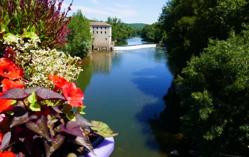 Location de vacances - Chalet à Montricoux - Rivière au pied du camping