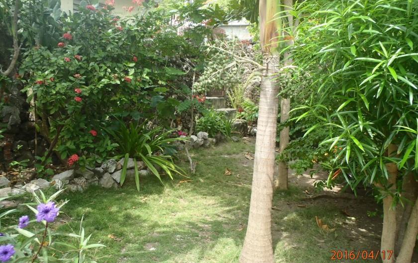 Location de vacances - Gîte à Terre-de-Haut - Aperçu du jardin