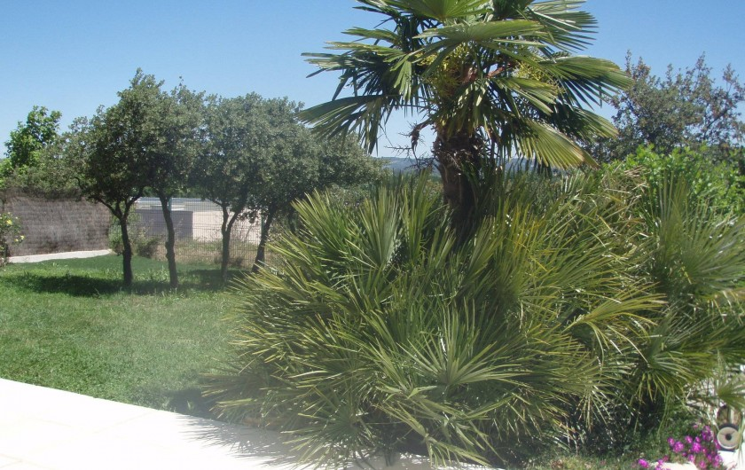 Location de vacances - Villa à Aix-en-Provence - Vue du jardin côté Est avec Palmiers et chênes