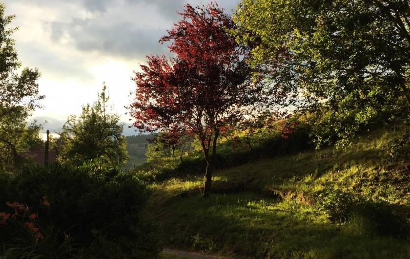 Location de vacances - Appartement à Thorens-Glières - La campagne, vue de la fenêtre de la chambre enfants; lumière fin de journée