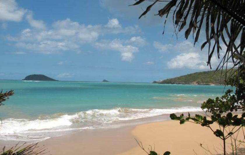 Location de vacances - Appartement à Deshaies - beauté et tranquillité des plages