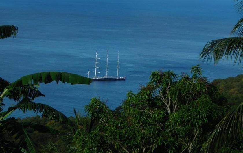 Location de vacances - Appartement à Deshaies - De beaux bateaux de croisière...