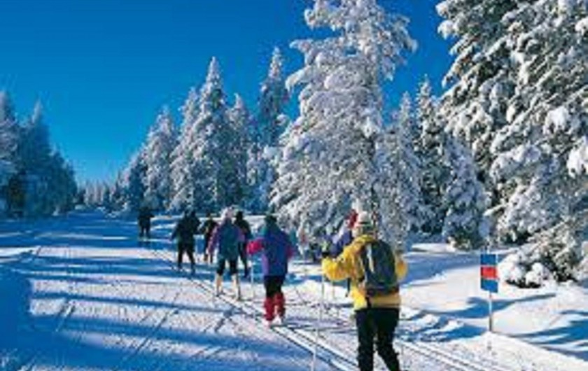 Location de vacances - Hôtel - Auberge à La Cabanasse - Ski de fond