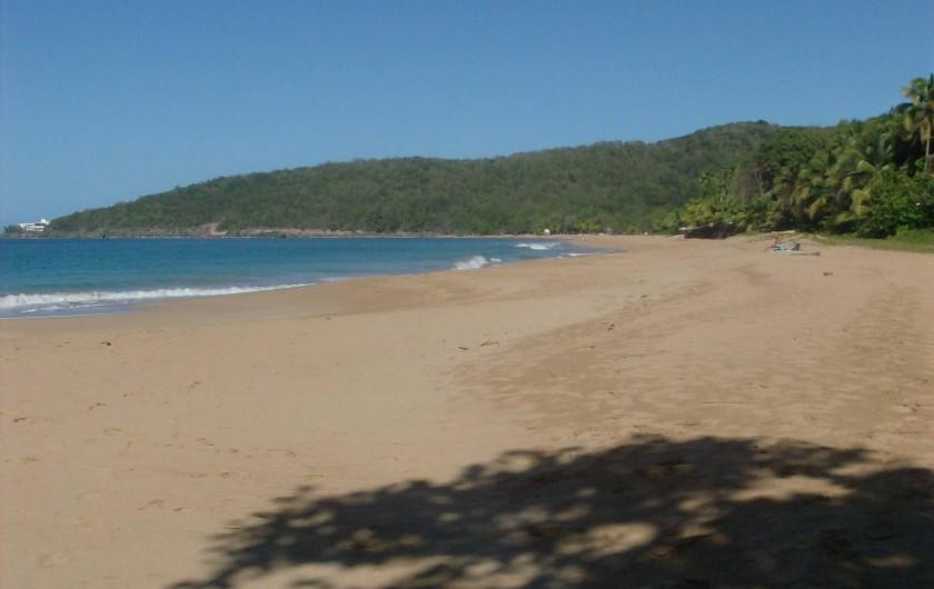 Location de vacances - Gîte à Deshaies - la plage de la perle à 1,5 km du gîte