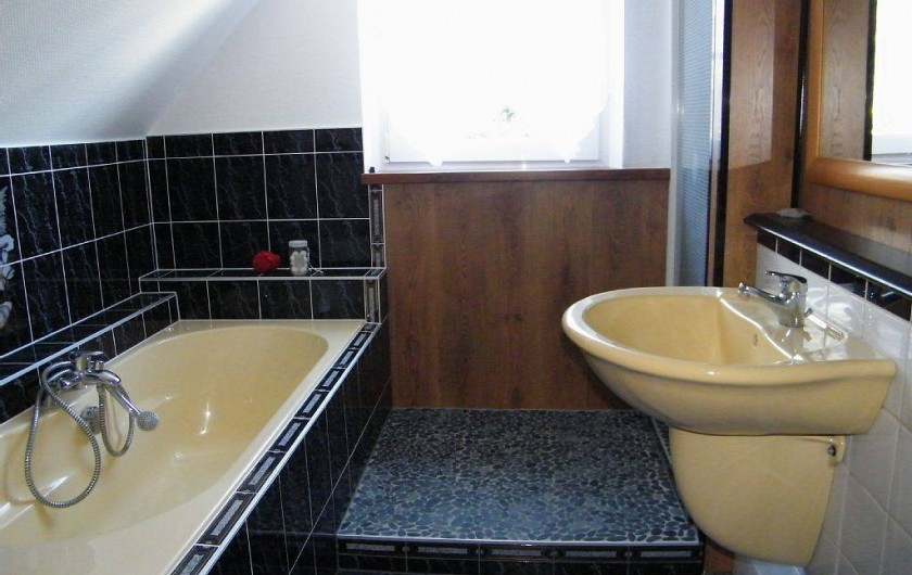 Location de vacances - Gîte à Kertzfeld - salle de bain douche baignoire et wc