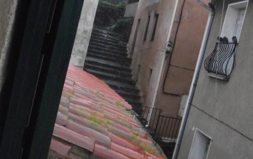 Location de vacances - Maison - Villa à Collioure - Vieux quartier