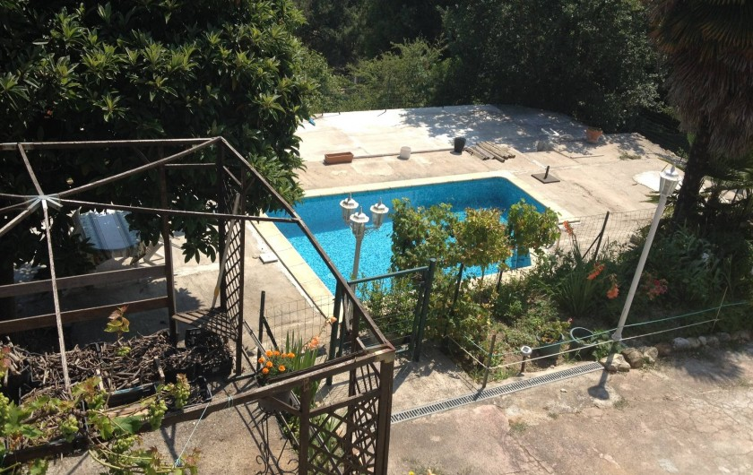 Location de vacances - Villa à Cantaron - La piscine vue de la terrasse