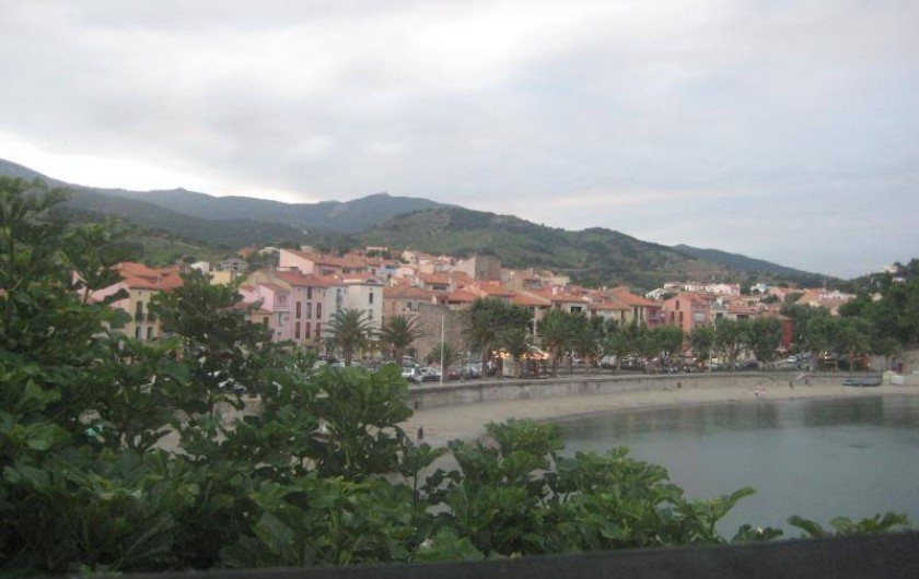 Location de vacances - Appartement à Collioure - Collioure