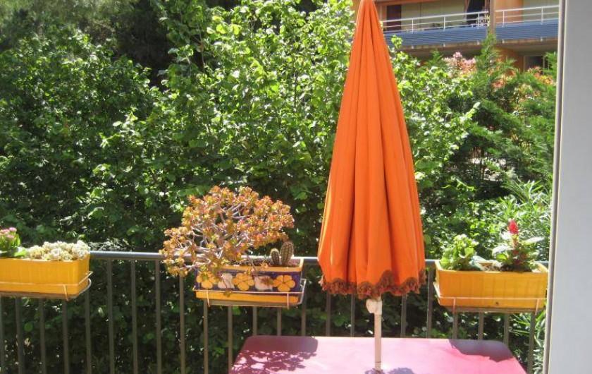 Location de vacances - Appartement à Collioure - Terrasse