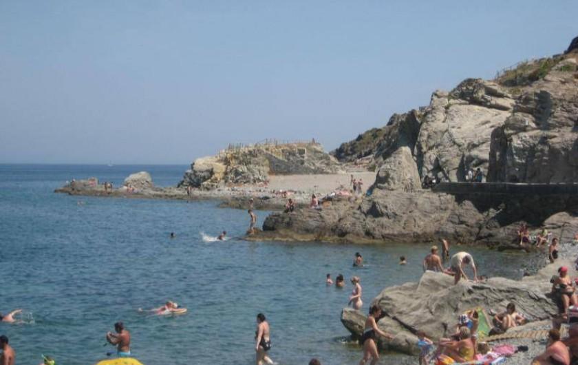 Location de vacances - Appartement à Collioure - Plage