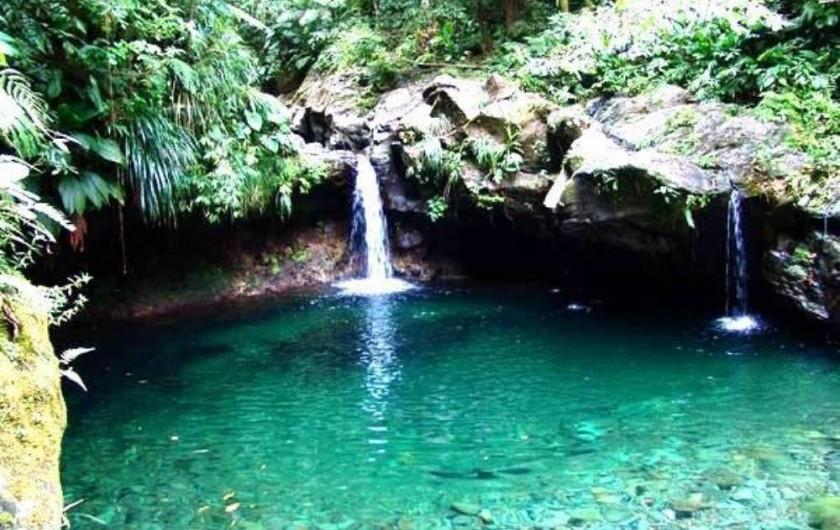 Location de vacances - Villa à Douville - Bassin paradis en pleine forêt tropicale à 1h20 de chez nous.