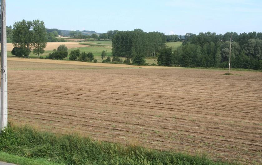 Location de vacances - Gîte à Wodecq - Vue depuis l'intérieur et également depuis la terrasse.