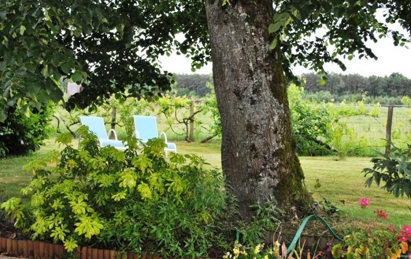 Location de vacances - Gîte à Paulmy - Jardin paysagé avec transats et bain de soleil  Petits fruitiers pour nos hôtes,