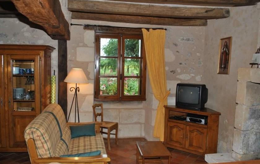 Location de vacances - Gîte à Paulmy - Espace salon avec cheminée fenêtre sud sur jardin