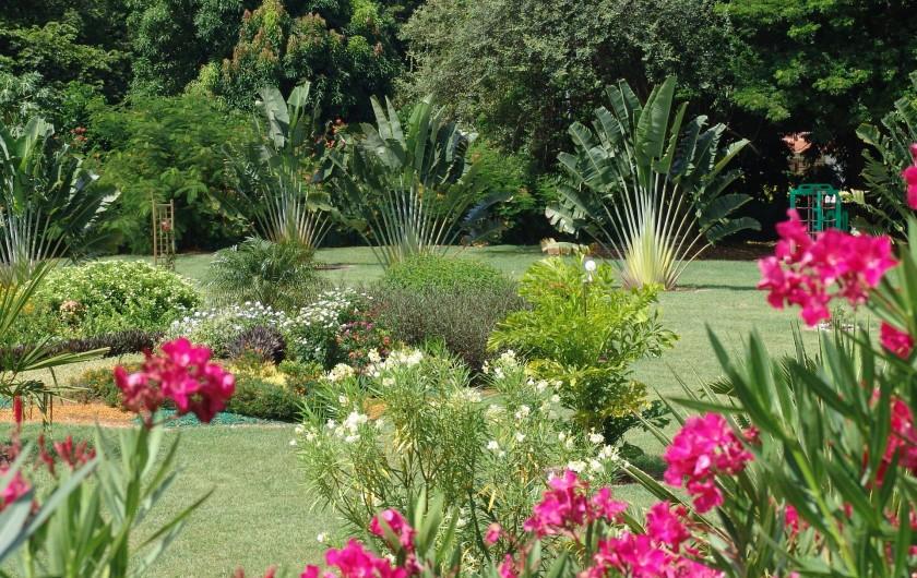 Location de vacances - Bungalow - Mobilhome à Le François - le magnifique parc de la Route des épices.