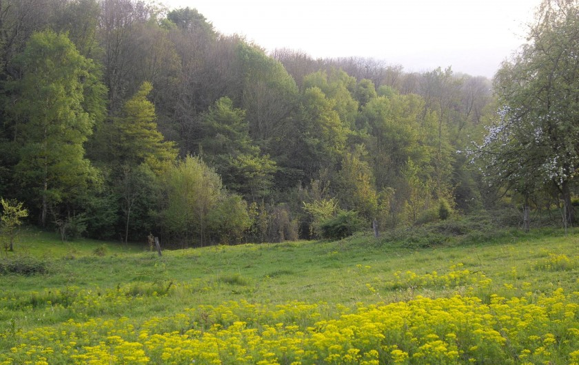 Location de vacances - Chalet à Chivres-Val - Le vallon