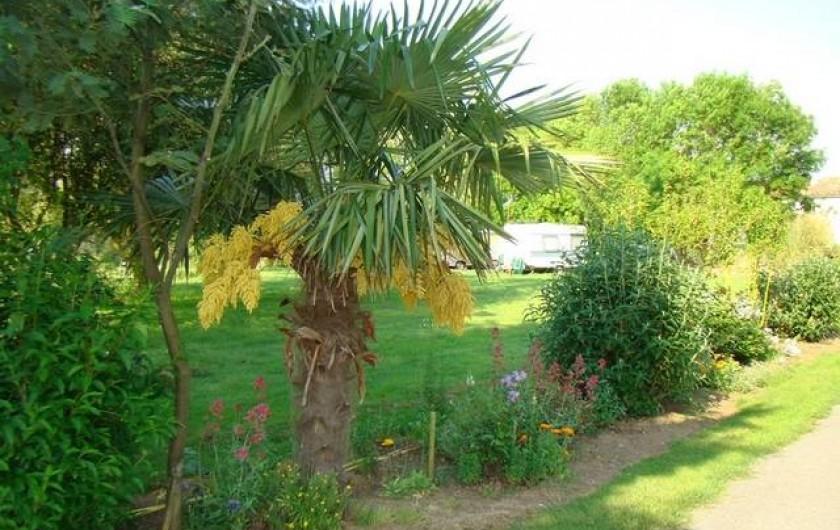 Location de vacances - Camping à Saujon