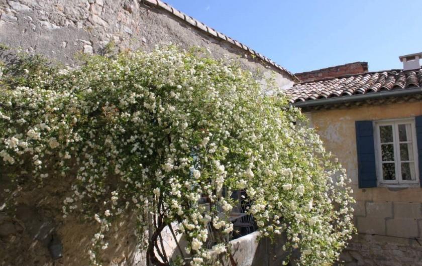 Location de vacances - Villa à Fontanes - extérieur