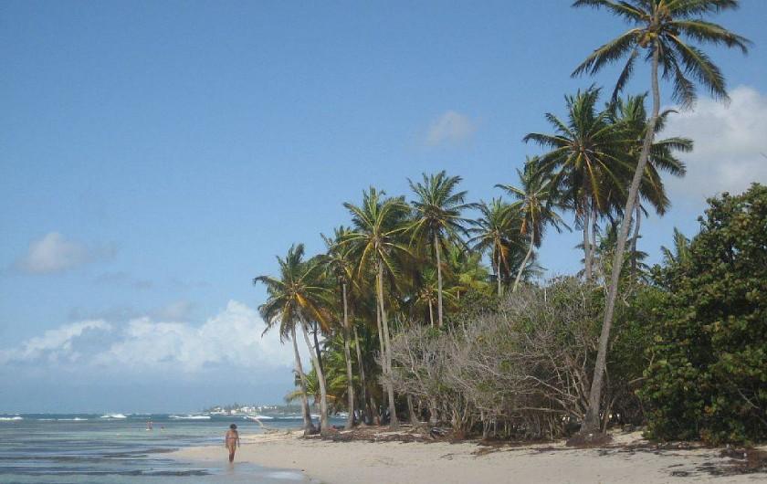 Location de vacances - Appartement à Sainte-Anne - La plage de Bois-Jolan Toute prôche