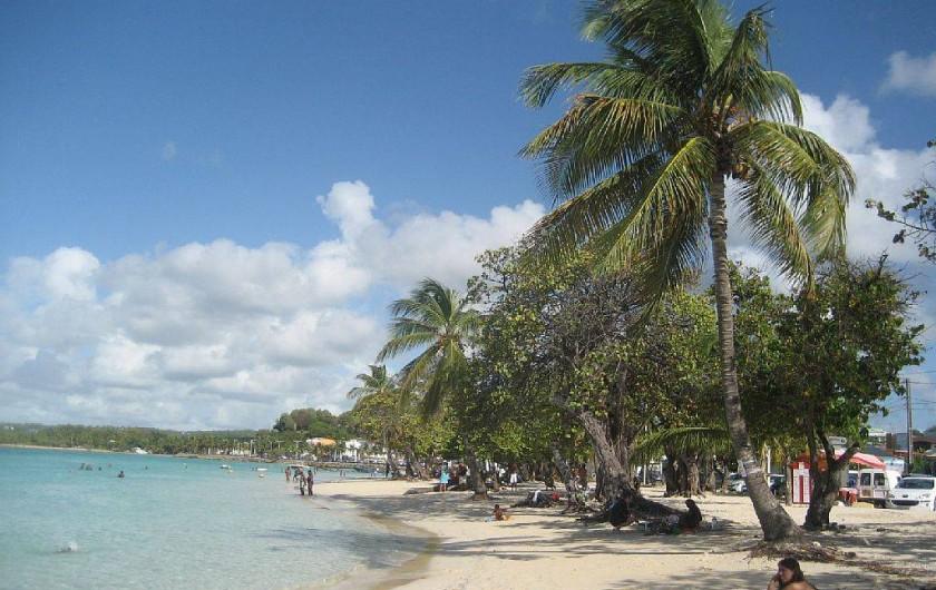 Location de vacances - Appartement à Sainte-Anne - La plage de Sainte-Anne
