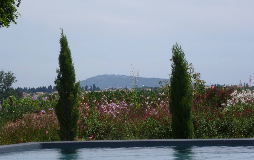 Location de vacances - Gîte à Mèze - Vue sur Mont St clair Sète