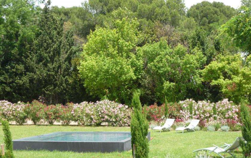 Location de vacances - Gîte à Mèze - Plunge spool - jardin Méditéraneen