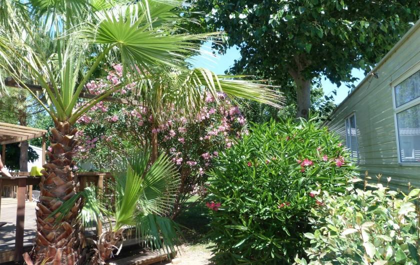 Location de vacances - Bungalow - Mobilhome à Vias - l'entrée sur l'emplacement